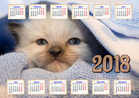 2018 horizontal yearly calendar example 3