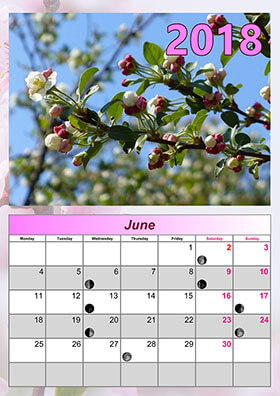 Monthly lunar calendar example 1