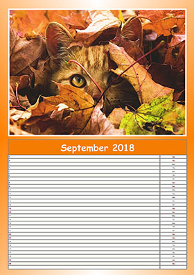 2018 monthly planner example