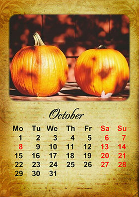 Vertical monthly calendar example 3